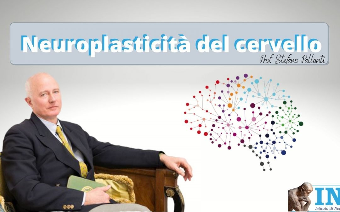 Neuroplasticità del Cervello [VIDEO]